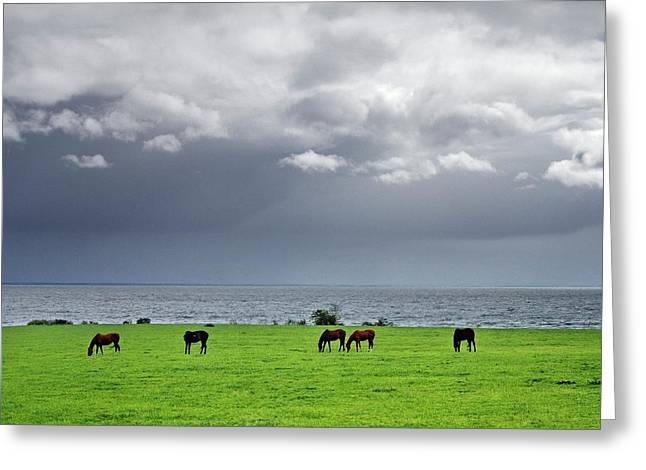 Rain Showers Cross Lough Neagh Near Coagh, County Tyrone, Northern Ireland Greeting Card