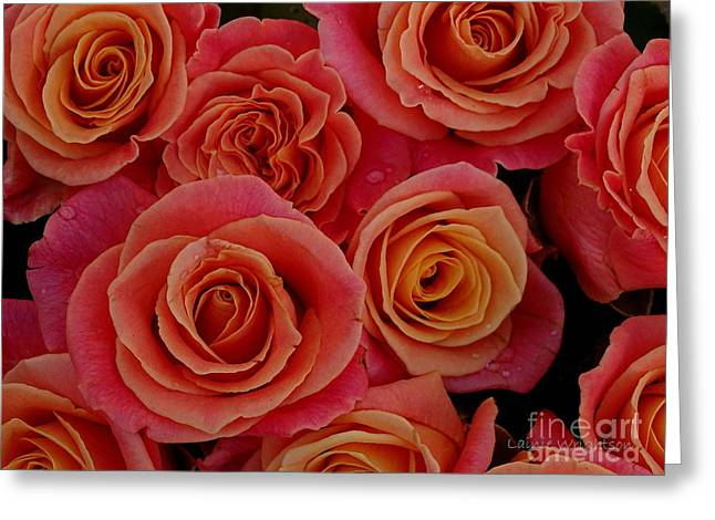 Rain Splashed Roses Greeting Card by Lainie Wrightson