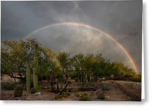 Greeting Card featuring the photograph Rain Then Rainbows by Dan McManus