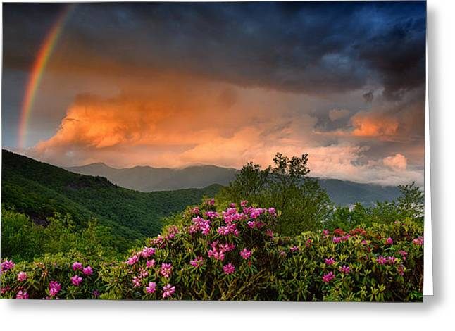 Rainbow And Rhododendrons On The Parkway Greeting Card
