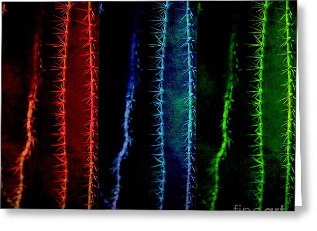 Rainbow Colors Greeting Card by Susanne Van Hulst