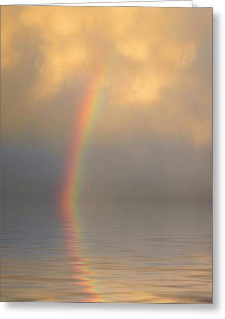 Rainbow Dream Greeting Card by Jerry McElroy