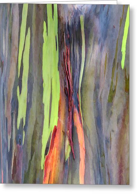 Rainbow Eucalyptus 13 Greeting Card by Dawn Eshelman