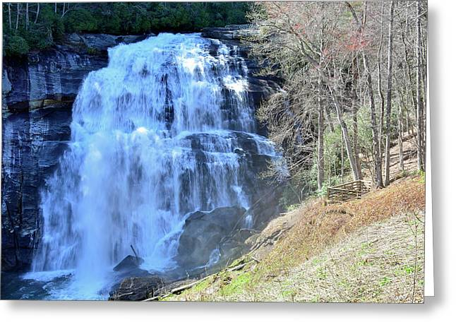Rainbow Falls In Gorges State Park Nc 02 Greeting Card by Bruce Gourley