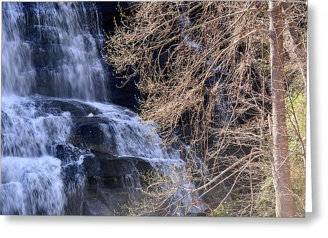 Rainbow Falls In Gorges State Park Nc 03 Greeting Card by Bruce Gourley