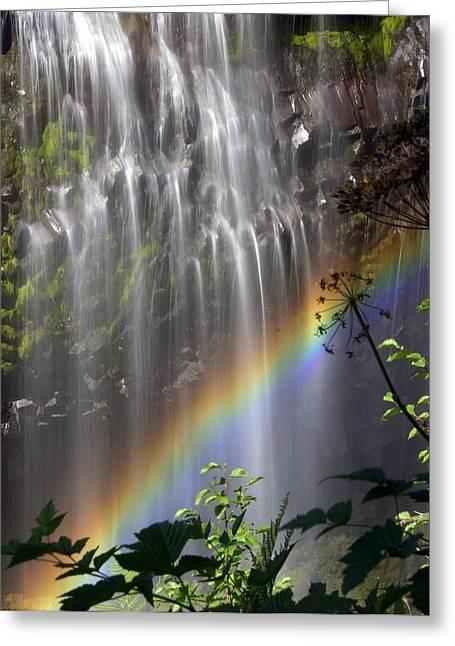 Rainbow Falls Greeting Card by Marty Koch