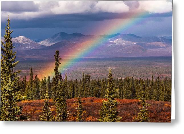 Rainbow Greeting Card by Joanie Havenner