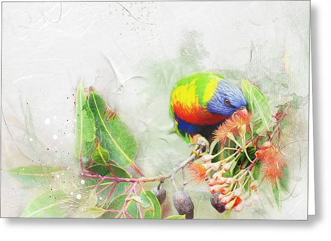 Rainbow Lorikeet Greeting Card by Margaret Goodwin