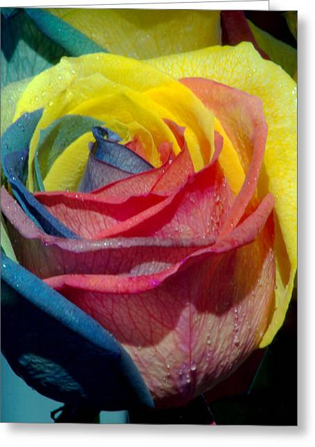 Rainbow Of Love 2 Greeting Card by Karen Musick