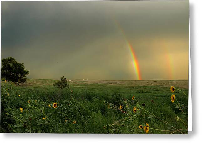 Rainbow Over The Prarie Greeting Card by Kami McKeon