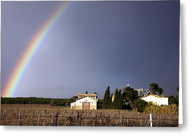 Rainbow Over Vineyard Greeting Card
