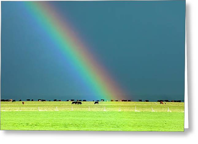Rainbow Pasture Greeting Card by Todd Klassy