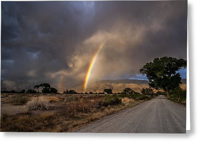 Rainbow Road Greeting Card by Cat Connor