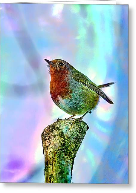 Rainbow Robin Greeting Card by Gouzel -