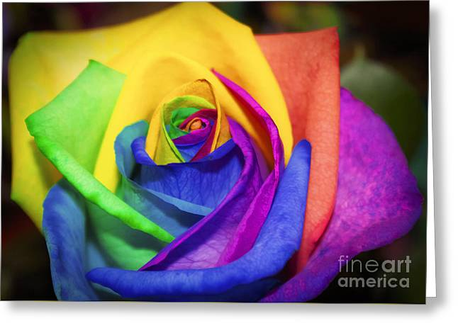 Rainbow Rose In Paint Greeting Card by Janice Rae Pariza