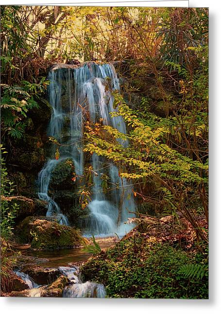 Greeting Card featuring the photograph Rainbow Springs Waterfall by Louis Ferreira