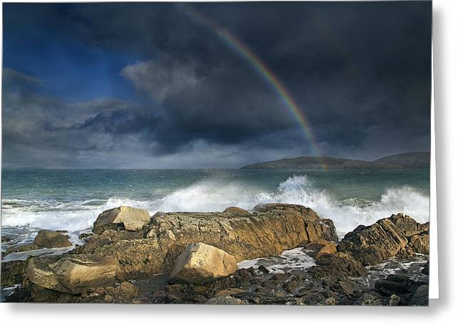 Rainbow To Heaven Shamrock Shores  Greeting Card by Betsy Knapp