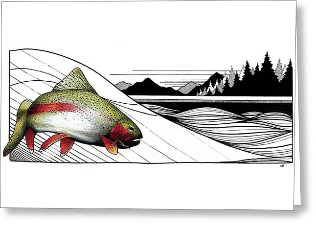 Rainbow Trout Greeting Card by Marcus Cline