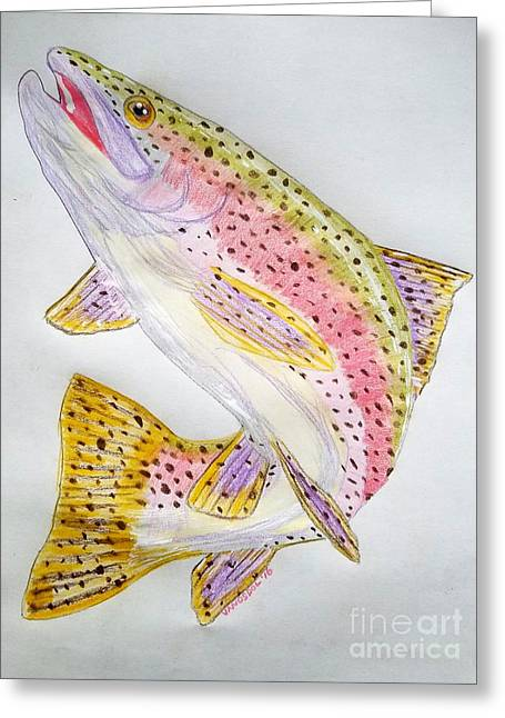 Rainbow Trout Presented In Colored Pencil Greeting Card by Scott D Van Osdol