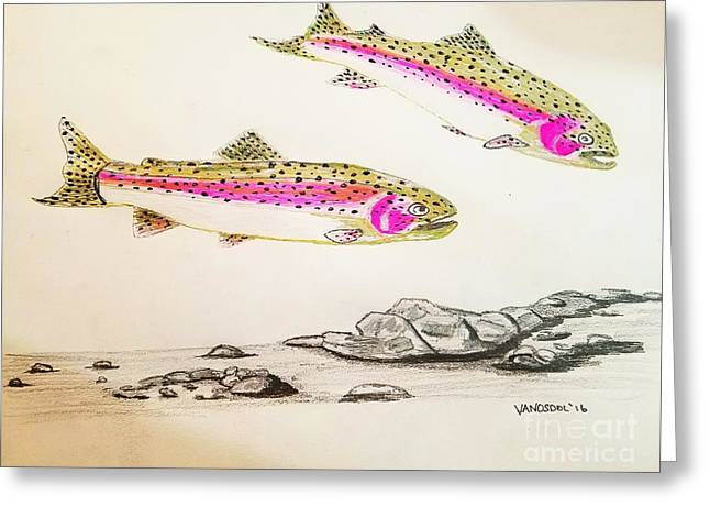 Rainbow Trout Scene - Original Gel Pen Greeting Card by Scott D Van Osdol