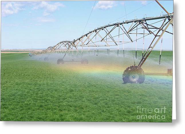 Rainbow Under The Pivot Greeting Card