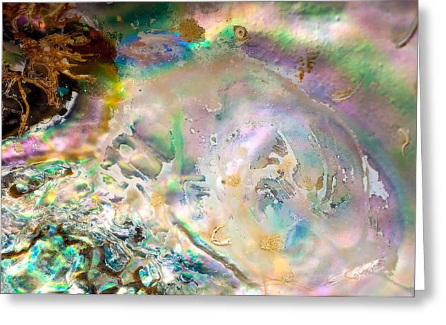 Rainbows And Seaweed Greeting Card by Joy Gerow