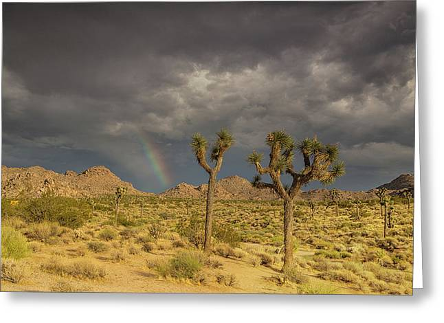 Rainbows Thunderstorms And Sunsets Greeting Card