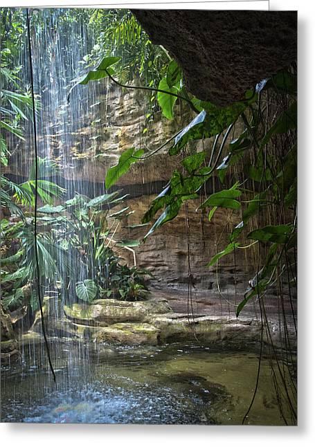 Rainforest Waterfall Greeting Card
