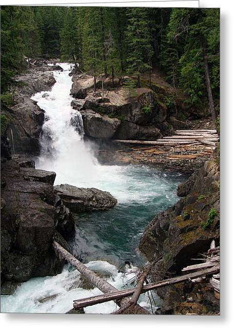 Rainier Waterfall Greeting Card by Ty Nichols