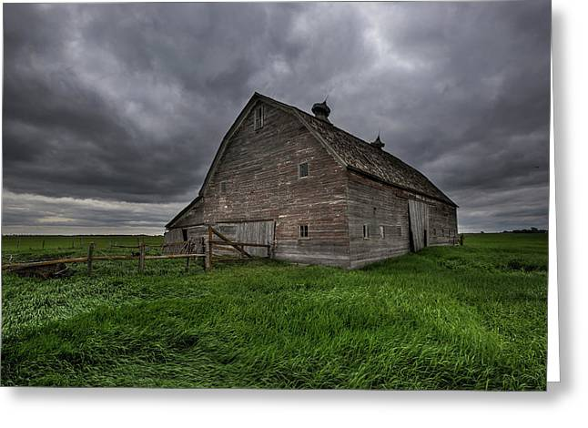 Rainy Day  Greeting Card by Aaron J Groen