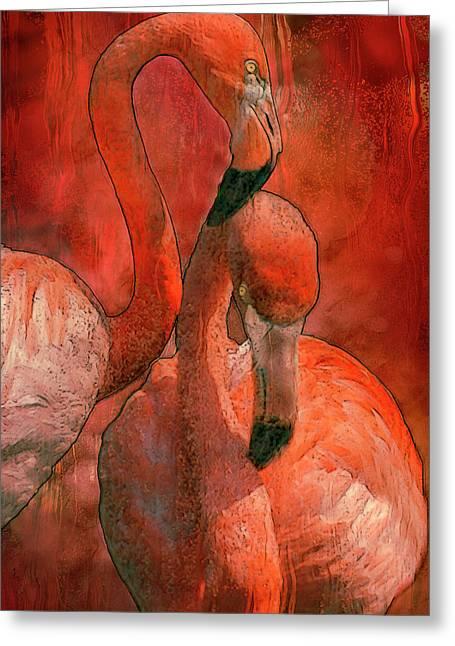 Rainy Day Flamingo Greeting Card by Jack Zulli