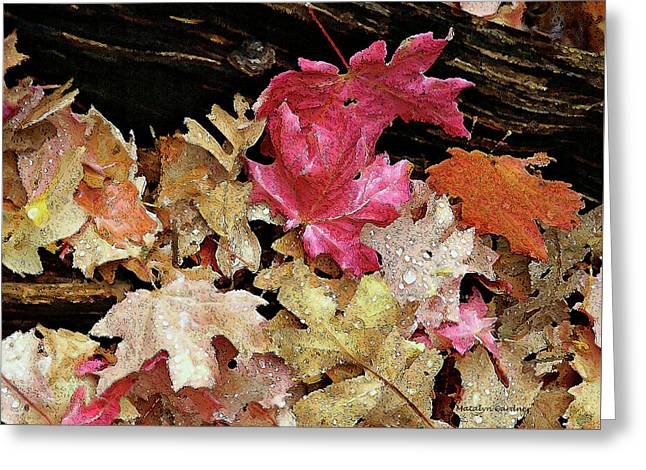 Rainy Day Leaves Greeting Card