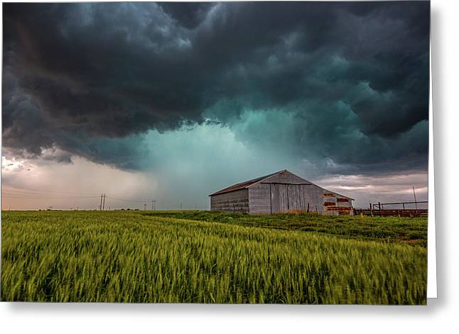 Rainy Day Greeting Card by Sean Ramsey
