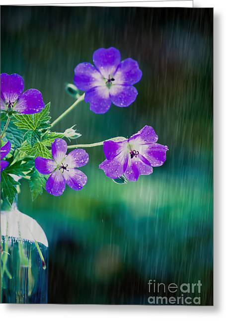Rainy Days And Mondays Greeting Card by Jan Bickerton