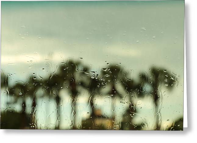 Rainy Daze Greeting Card by Christopher L Thomley