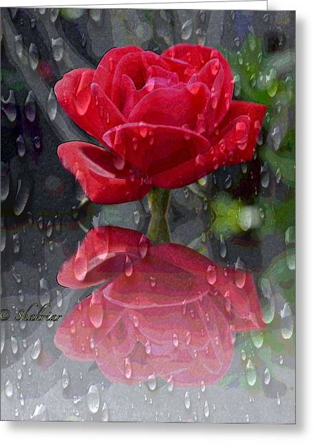 Rainy Reflection  Greeting Card