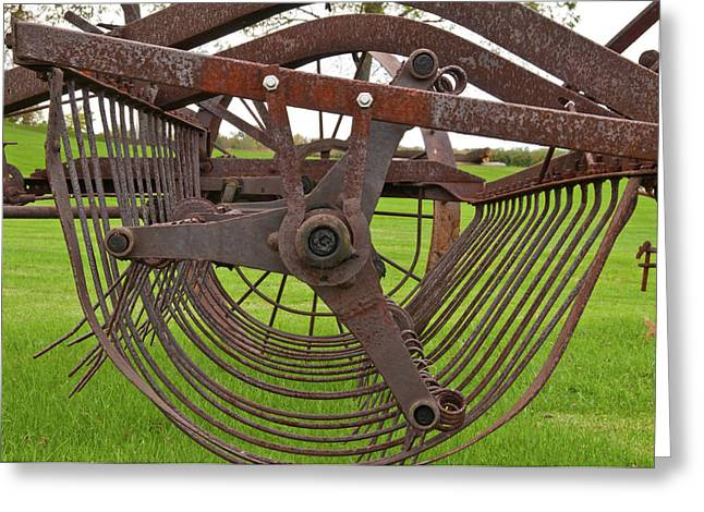 Greeting Card featuring the photograph Rake 3118 by Guy Whiteley