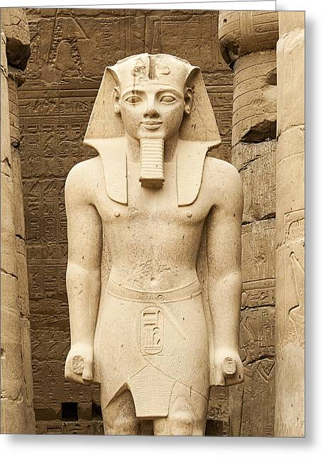 Rameses II At Luxor Temple, Egypt Greeting Card by David Henderson
