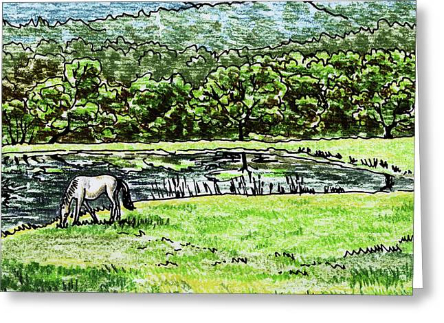 Ranch Pond And Grazing Horse Greeting Card