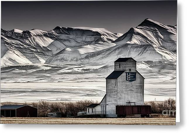 Ranchland Elevator Greeting Card