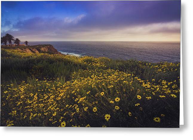 Rancho Palos Verdes Super Bloom Greeting Card