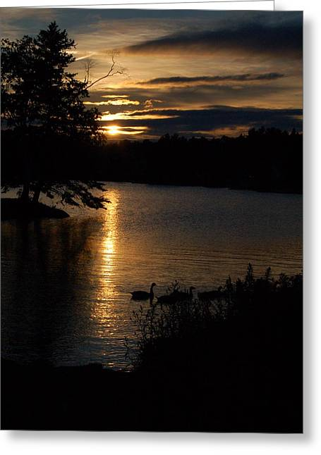 Rangeley Maine Greeting Card by DeLa Hayes Coward