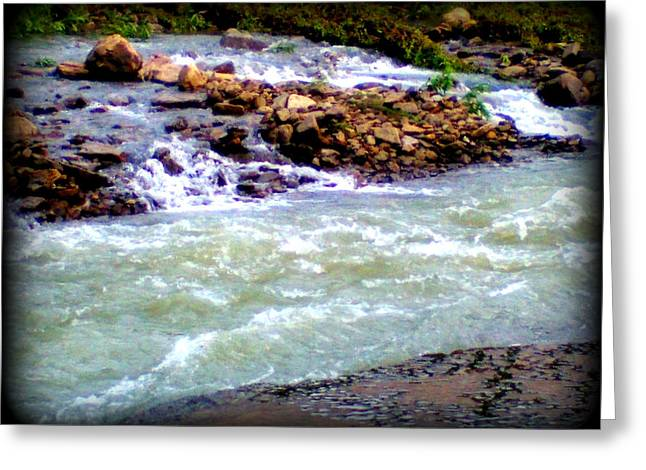 Rapid Water Greeting Card by Lesli Sherwin