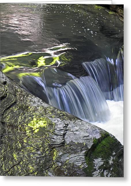 Rapids At Watkins Glen Greeting Card by Elizabeth Hoskinson
