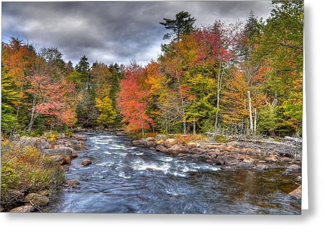 Rapids On The Moose River Greeting Card by David Patterson