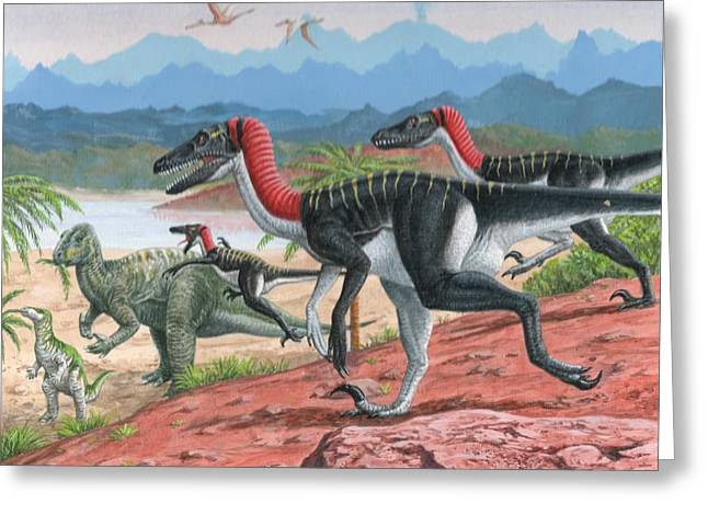 Raptor Attack Greeting Card by Gary Thomas