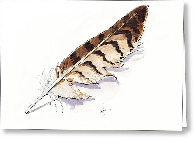 Raptor Feather Greeting Card