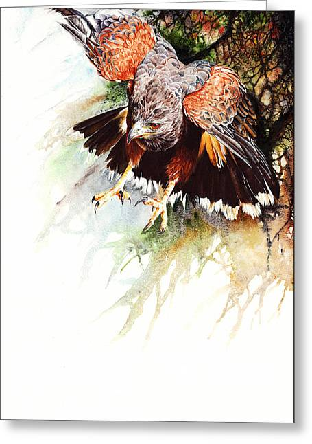 Raptor Greeting Card