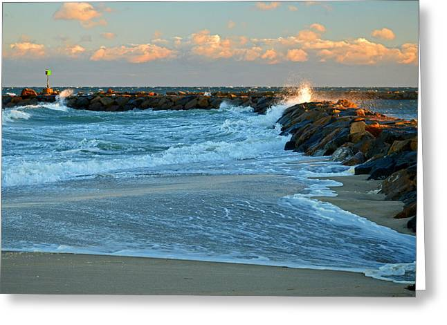Rapture On Cape Cod Bay Greeting Card by Dianne Cowen