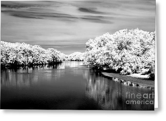 Raritan River Bw Infrared Greeting Card by John Rizzuto